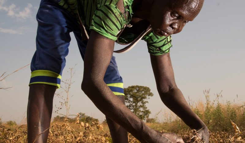 South Sudan famine crisis